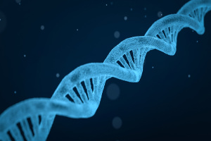 This image has an empty alt attribute; its file name is dna300x200.jpg