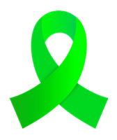 Lime Green Ribbon